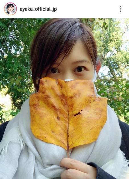 絢香、秋の自然を満喫&娘のどんぐり拾いに夢中な姿公開し「大きくなりましたね」の声サムネイル画像