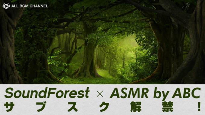 音の森にようこそ!「Sound Forest」の環境音がサブスク解禁