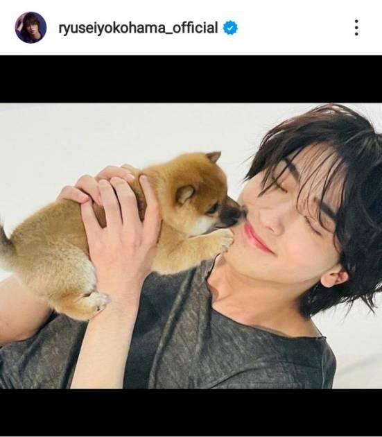横浜流星、子犬を抱いた笑顔&クールな横顔SHOTにファン興奮「なんてイケメン」「最高過ぎん!?」サムネイル画像!