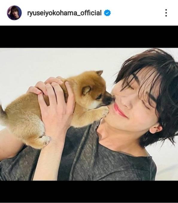 横浜流星、子犬を抱いた笑顔&クールな横顔SHOTにファン興奮「なんてイケメン」「最高過ぎん!?」